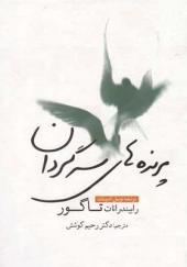 کتاب-پرنده-های-سرگردان-اثر-رابیندرانات-تاگور